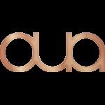aura-next-gen-pos